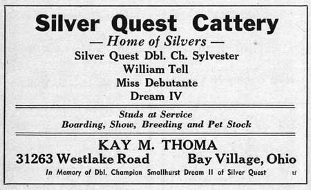 Silver Quest